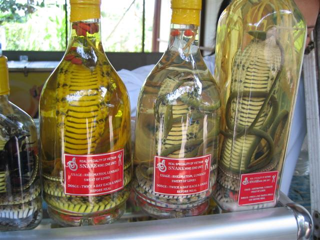 Snake-Wine-Small