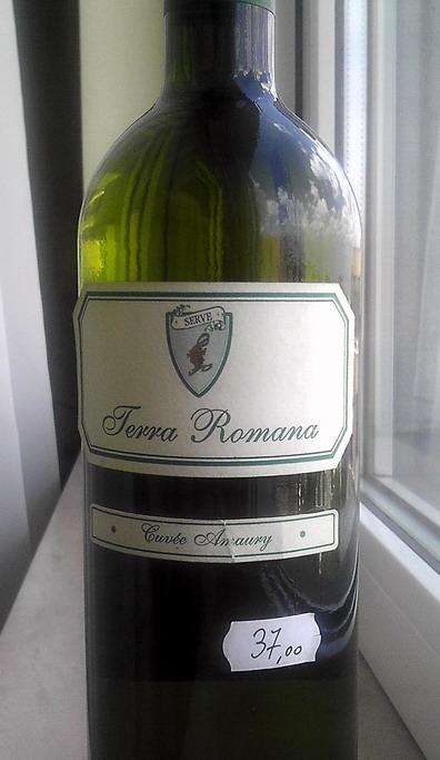 Terra Romana Amaury 2005